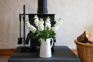Foxglove Cottage Feature